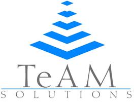 www.teamsolutions.it